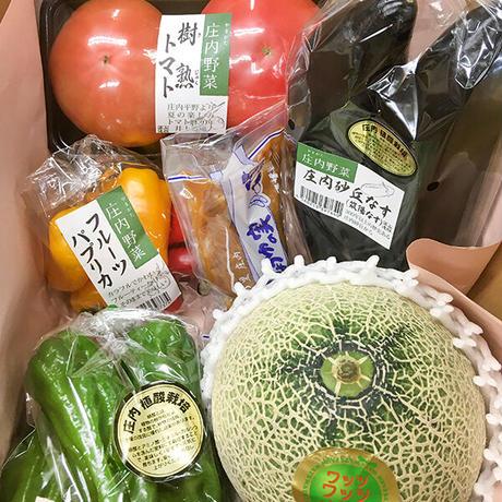 【Cradle個人サポーター】Bコース 新規申込/更新(年会費)