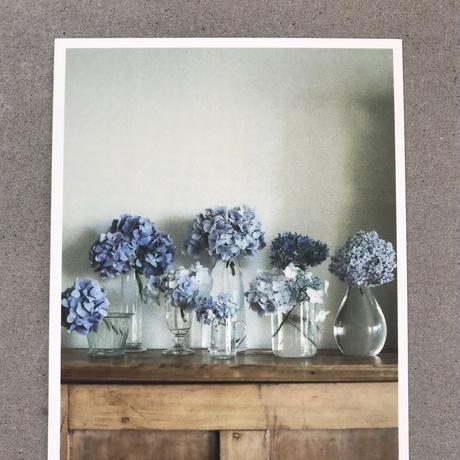 季節の葉書 紫陽花