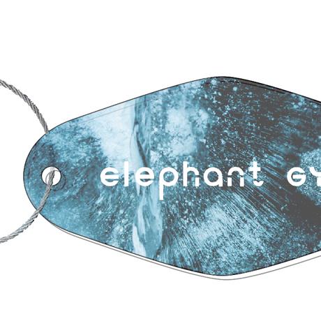 Elephant Gym Key Chain