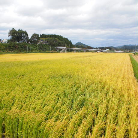 マイ・田んぼ:オーナー制度「私の田園」