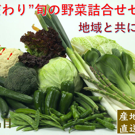 こだわり旬の野菜詰合せセット【5種類】宅配サービス【送料無料】
