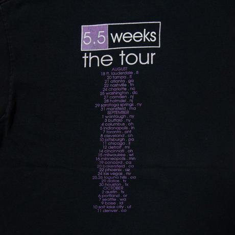 """'99 Tori Amos """"5.5 Weeks Tour"""""""