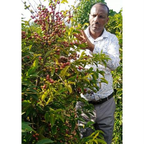 エチオピア豆のまま5kg飲食店様&企業様向けダークロースト