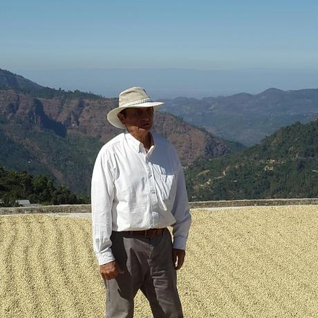 ラ・ロスマ農園500g ライトロースト