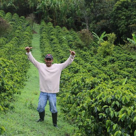 ラ・パルセリタ農園豆のまま1㎏ダークロースト