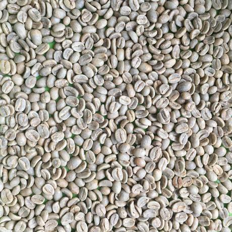 有機豆使用      ペルー Kunamia