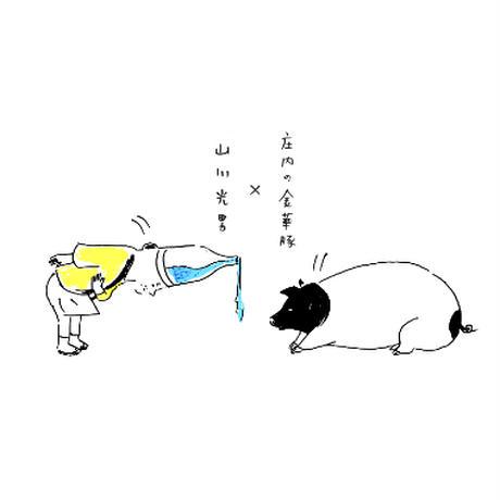 山川光男 2021 なつ  1800ml