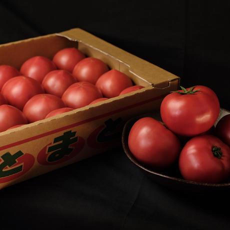 情熱トマトーLサイズ【18個入り】