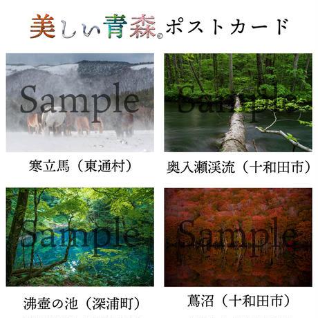 美しい青森ポストカード(全10種)【対馬慎太郎】