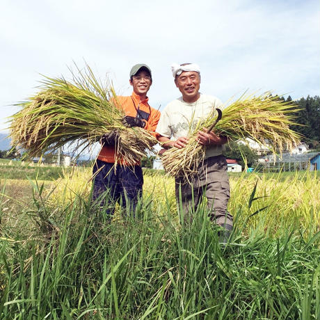 【毎月お届け!定期便】2020年 へんぺさんちのお米「こしひかり」 ~玄米10kg~