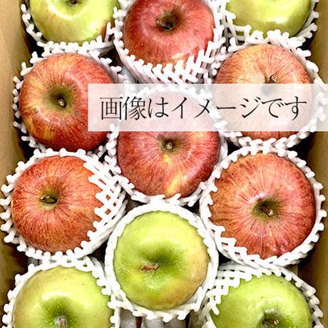 旬のりんご 3kg箱(約2.5kg入)
