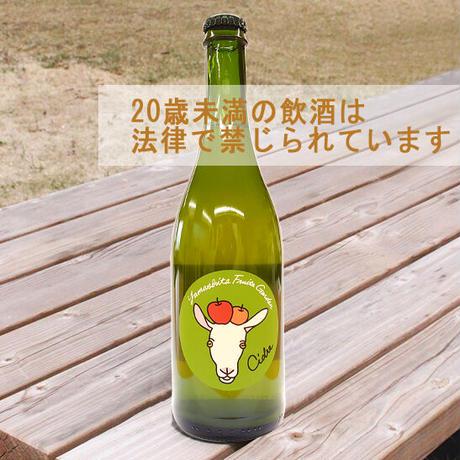 【GS-19】シードル飲み比べセット