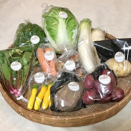 楽しい野菜の宝箱「やさいばこ」(旬の野菜10品ほど)