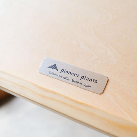 pioneer plants / TRAY