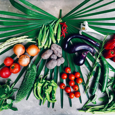 Natural vegetable set 2019.8.29 harvest & shipping