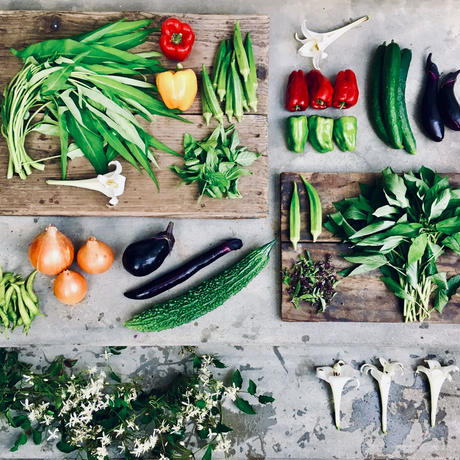 natural vegetable set  2019.09.05 harvest &  shipping