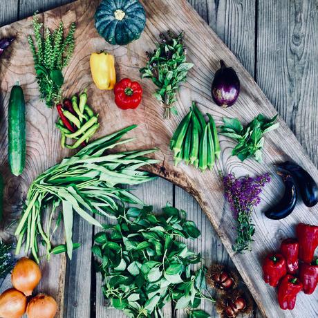 natural vegetable set 2019.09.12 harvest & shipping