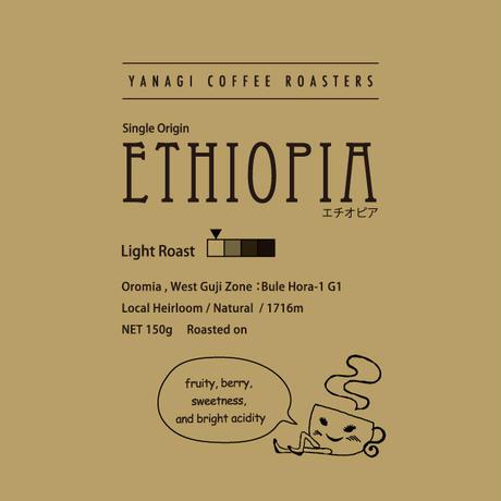 エチオピア グジ ブレホラ農園G1 ナチュラル 特別ロット 150g【浅煎り】【シングルオリジン】