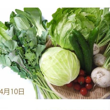 まるごと季節の野菜セット(中)