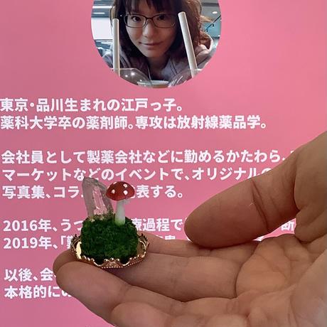 粘土作家ナガツミナ展示会展示作品 キノコフィギュア 『プチベニテンタケ』