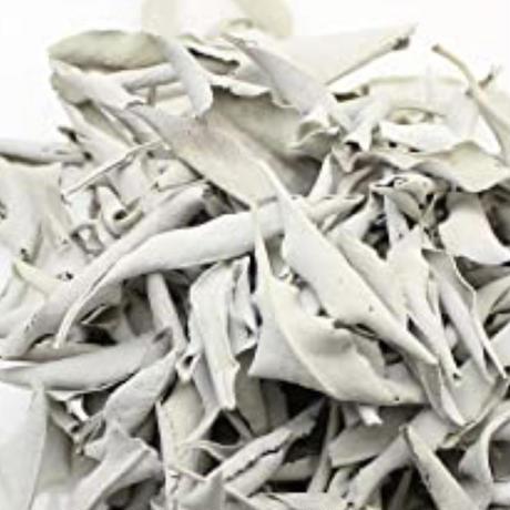 浄化用ホワイトセージ(野生種)