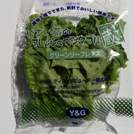 植物工場産野菜セット(16袋)