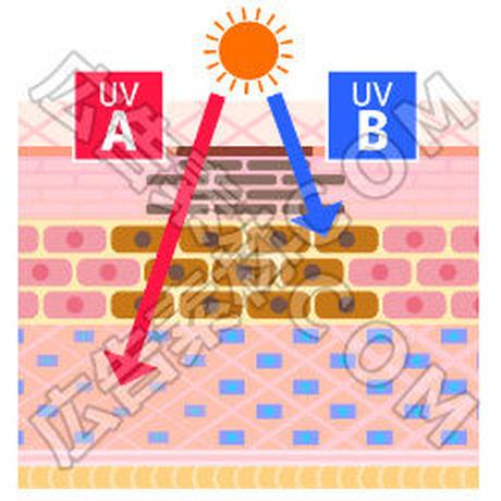 紫外線でダメージを受けている肌のイメージ図