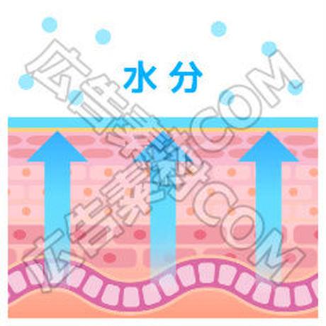 肌の保湿3