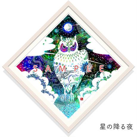 [45 size]パパイヤの園/星の降る夜