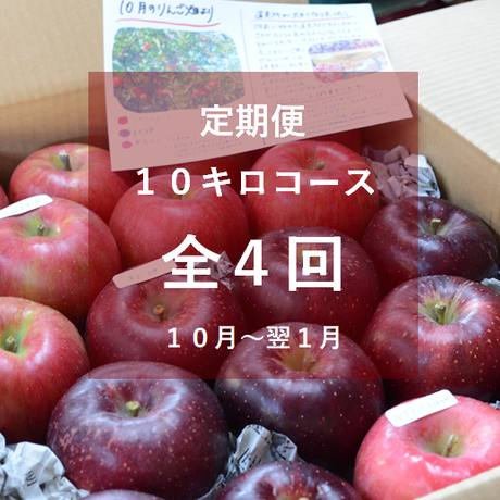 【2021年】りんご定期便10キロコース/全4回/10月~来年1月(送料込み※)