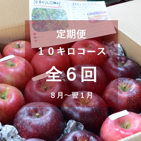 【2021年】りんご定期便10キロコース/全6回/8月~来年1月(送料込み※)