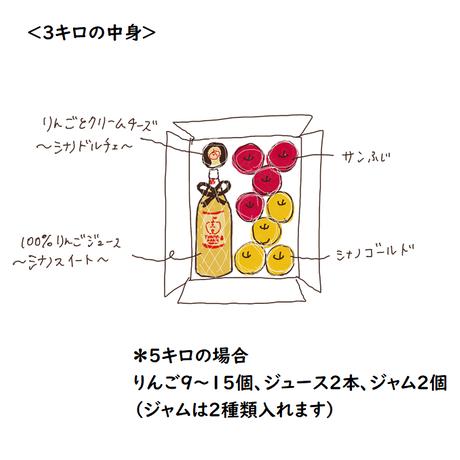 まるごとりんごセット~サンふじ&シナノゴールド~5キロ