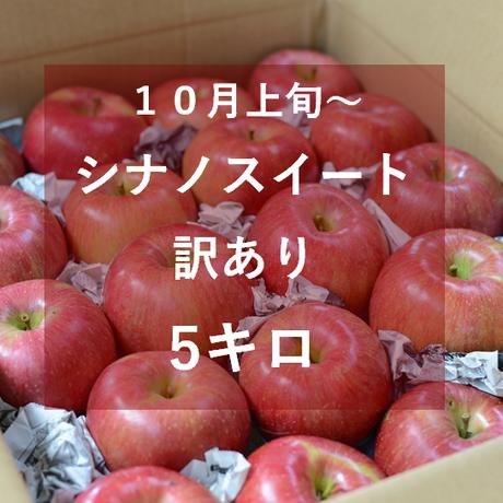 シナノスイート(訳あり)5キロ
