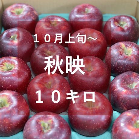 秋映10キロ