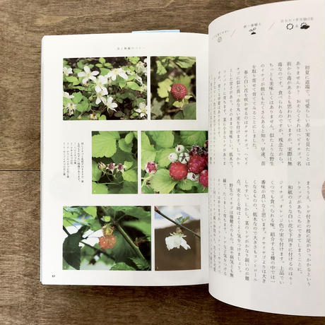 食べられる庭図鑑