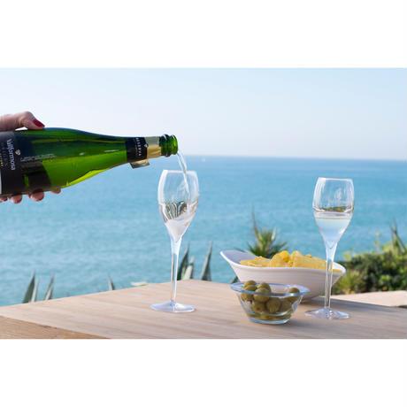 【限定】スペインのワイナリー「Vallformosa」応援スパークリング4本セット