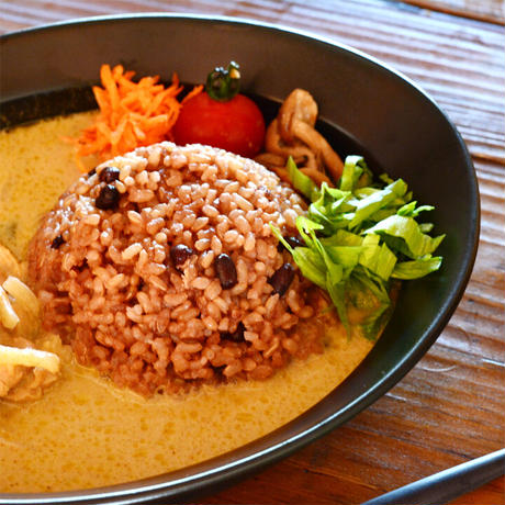 【定期購入 6か月】酵素玄米 無農薬 ヘルシー 国産 酵素玄米 真空パック 冷凍 150g 10食分 送料無料
