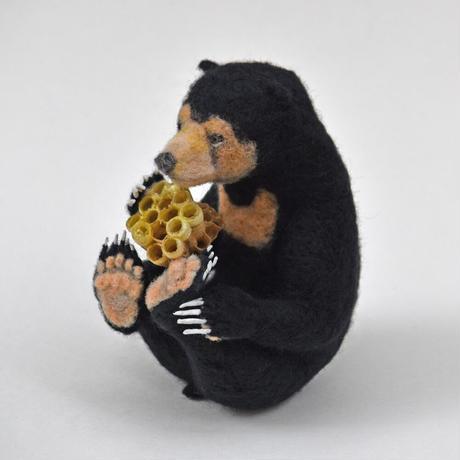 ハチミツを食べるマレーグマ