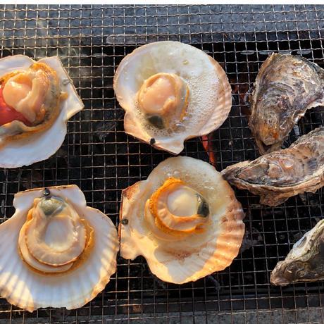 北海道産 寿カキ 大 1個