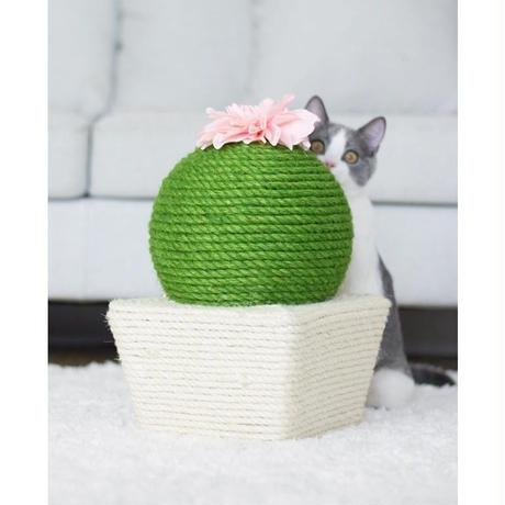 サボテン 猫用の爪とぎ おもちゃ お花付き_2つのタイプから選べる♪