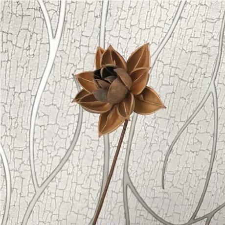 蓮の花 ドライフラワー インテリアやフラワーリースに最適な10㎝の大輪