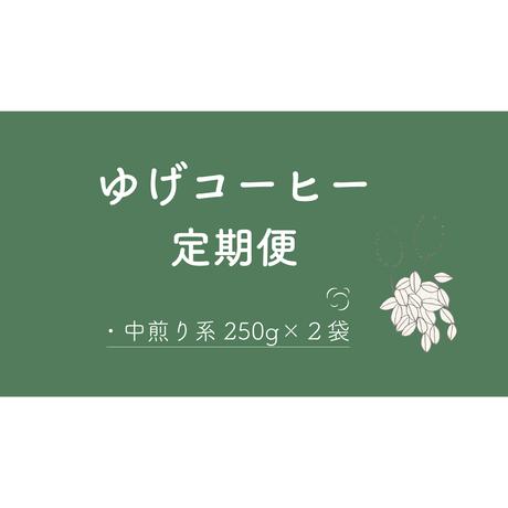 [豆]定期便【中煎】 250g 2種 合計500g