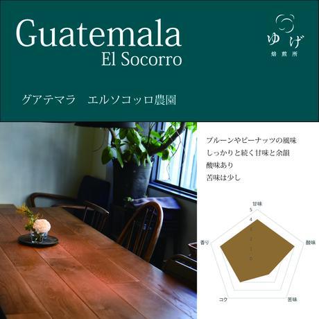 グアテマラ    エルソコッロ農園 100g