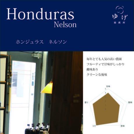 ホンジュラス   ネルソン 200g