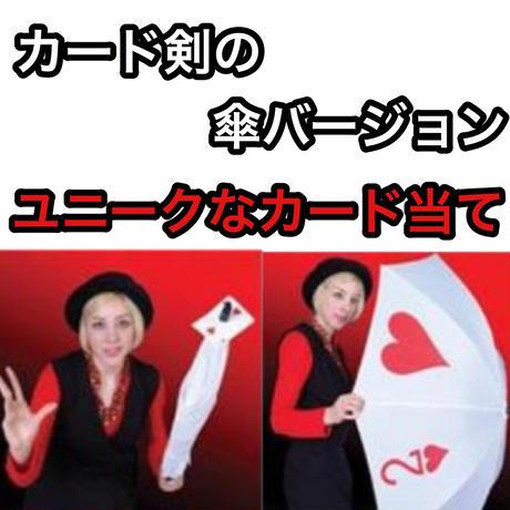 《お取り寄せ》アンブレラ・スルー・カード【G0118】Umbrella thru Cards