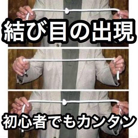 アメージング・ノット【G1239】Knots So Fast