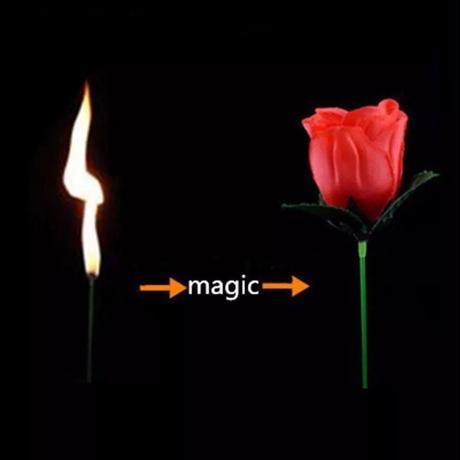 トーチトゥローズ【G0415】Torch To Rose (Red)