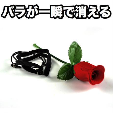 バニシングローズ【G1357】Vanishing Rose