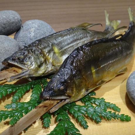 長良川天然鮎のロティ / 2尾