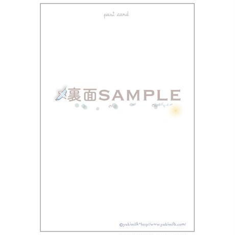 ポストカード - 森の泉 no.1 -